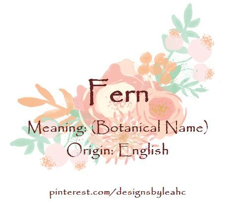 Baby Girl Name: Fern. Meaning: (Botanical Name). Origin: English.