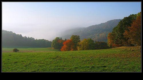 Slunecni stran - Sever podzim 08   Flickr - Photo Sharing!