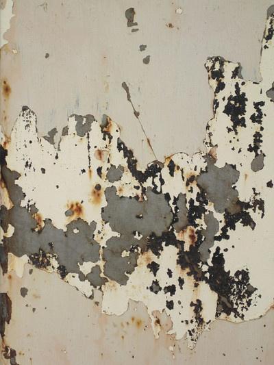RustyKathryn Well, Peel Painting, Peeling Paint, Painting Art, Art Journals, Colors, Rusty Peel, Rust Metals, Painting Texture