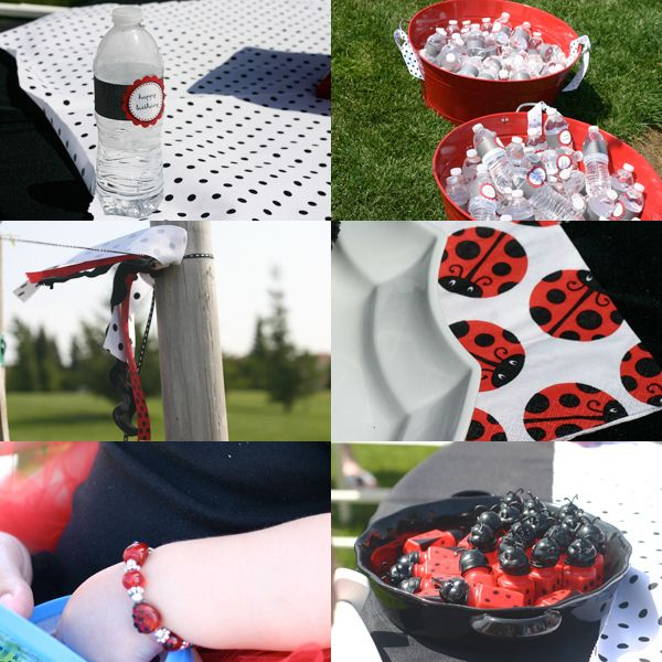 lady bug party ideas-Rebecca-  LOVE the high chair decor and I know of a specialty cookie place in Jenks that could probably do the cookies