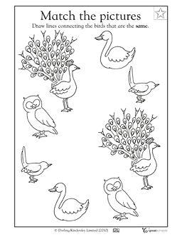 1000+ images about Bird Unit on Pinterest | Worksheets, Bird ...