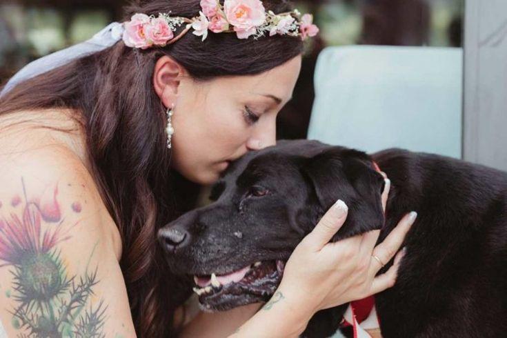 Лабрадор Чарли все 15 лет жизни был преданным другом для своей хозяйки Келли О'Коннелл. В прошлом апреле у животного была диагностирована опухоль головного мозга.