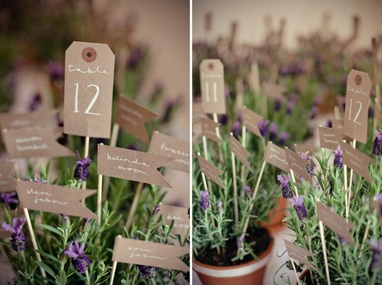 seating plan in pots of lavender! So sweet!