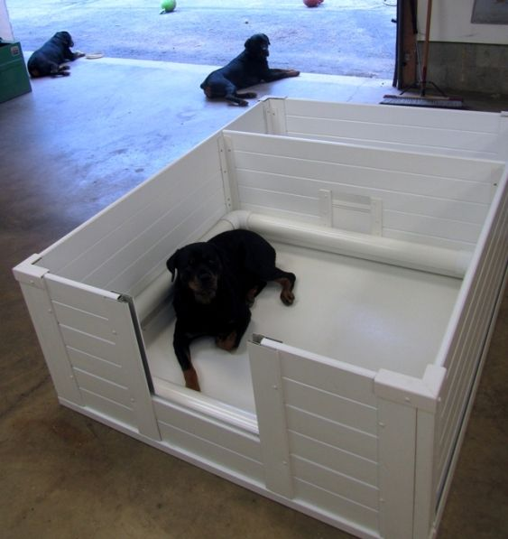 49 Best Whelping Box Images On Pinterest Whelping Box