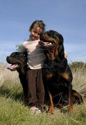 This was me when I was young...miss my Rottweilers #bestbreedever This is how they are with kids,protective,loving!