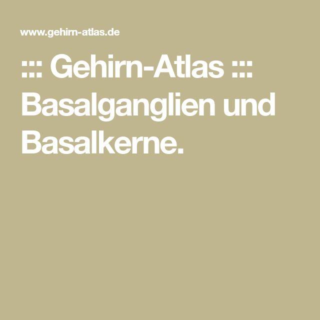 ::: Gehirn-Atlas ::: Basalganglien und Basalkerne.