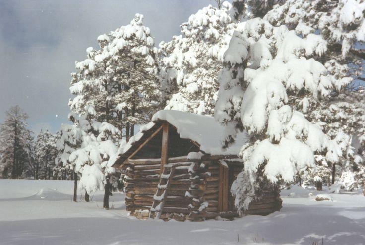 Sierra Tarahumara Chihuahua - Cabaña nevada