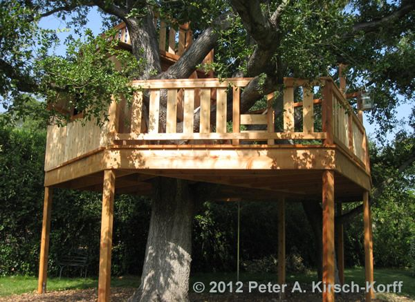 Free Standing Tree House Plans 25 best tree house images on pinterest | treehouses, kid tree
