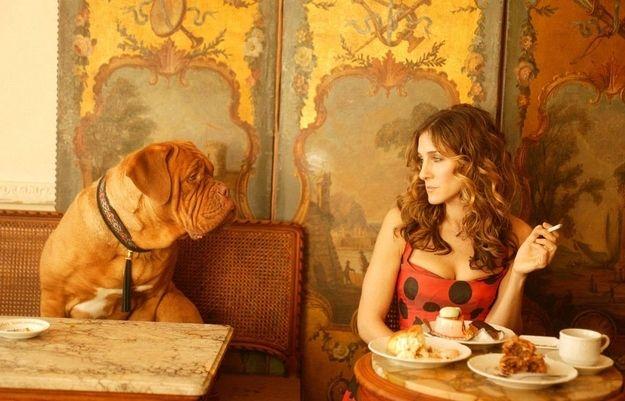 CarrieParis, Dogs, Carriebradshaw, Dresses, Sarahjessicaparker, The Cities, Carrie Bradshaw, Sarah Jessica Parker, American Girls