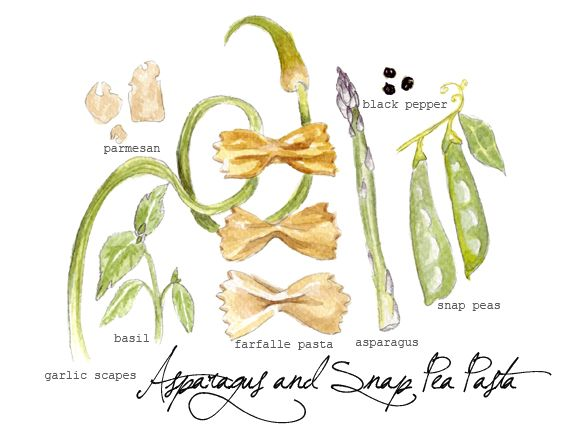 ... ILLUSTRATIONS on Pinterest | Pasta, Illustrated recipe and Spaghetti