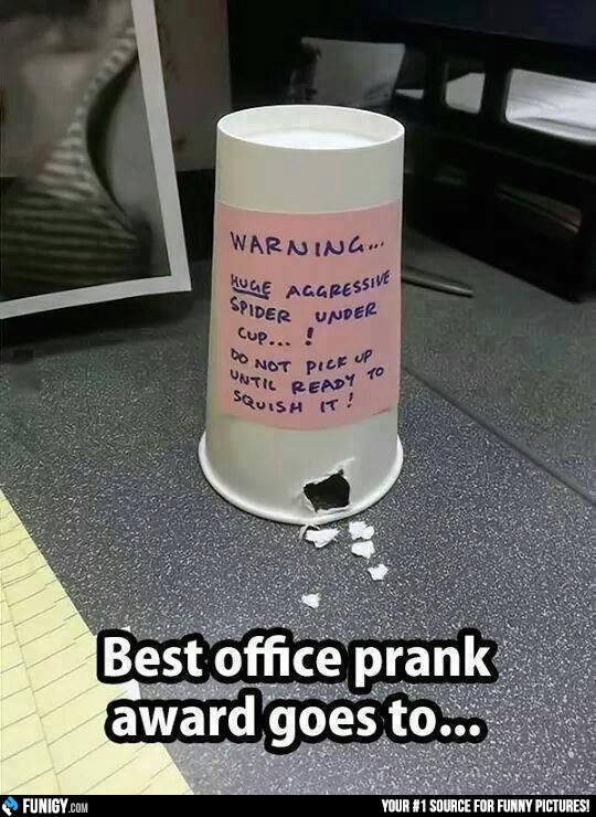 Best office prank award goes to... (Funny FAIL Pictures) - #aggressive #cup #office #prank #spider #warning