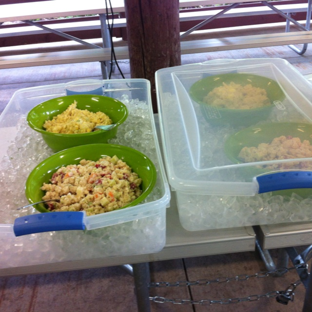Great picnic idea!  Tubs filled with ice to keep salads chilled and lid to keep flys out.