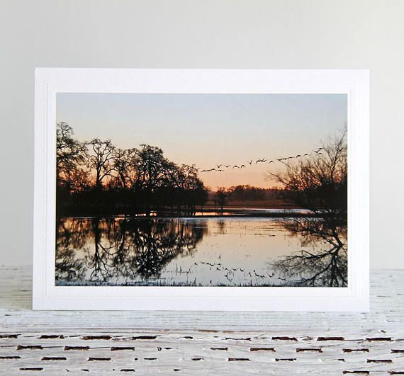 Laguna Sunrise Photo Greeting Card Water Reflections of Trees