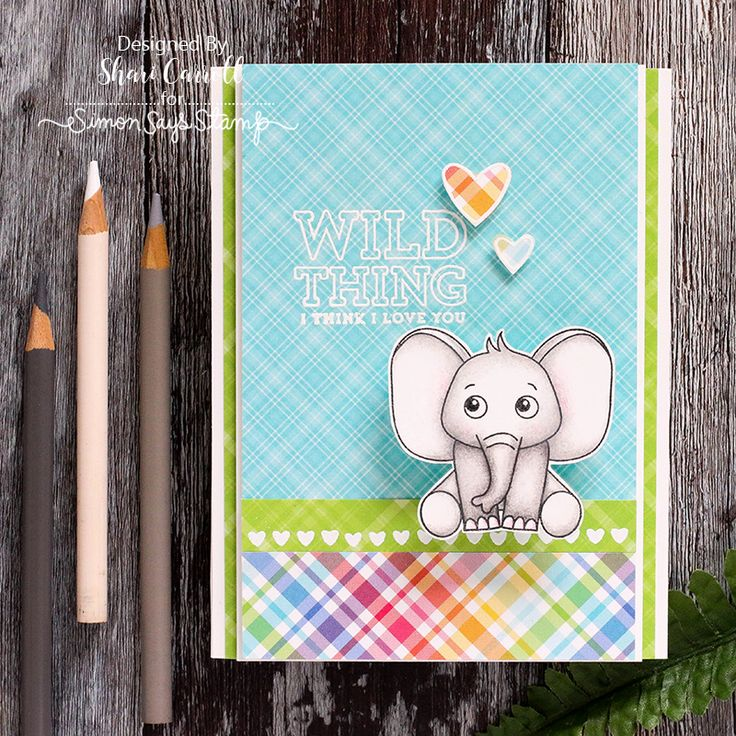 Wild And Colorful: Simon Says Stamp Card Kit Reveal and Inspiration