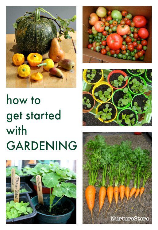 How to start a garden with kids :: garden classroom :: school gardening club ideas