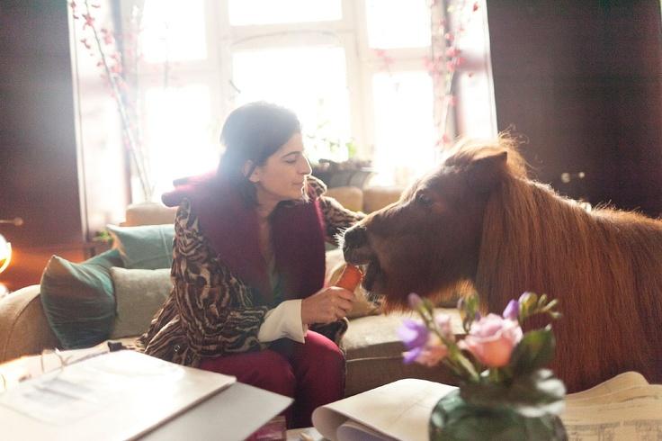 love this house tourHouse Tours, Shetland Ponies, Miniatures Horses, Living Rooms, Mini Horses, Miniature Horses, Dorothee Schumacher, Miniatures Ponies, Minis Horses
