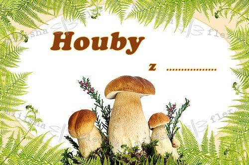nálepka sušené houby - Hledat Googlem