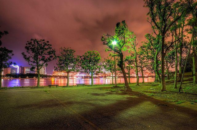 Night Lights at お台場海浜公園 | Flickr - Photo Sharing!