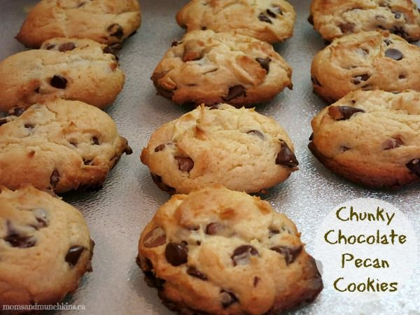 Seriously Chocolate Pecan Cookies Recipe — Dishmaps