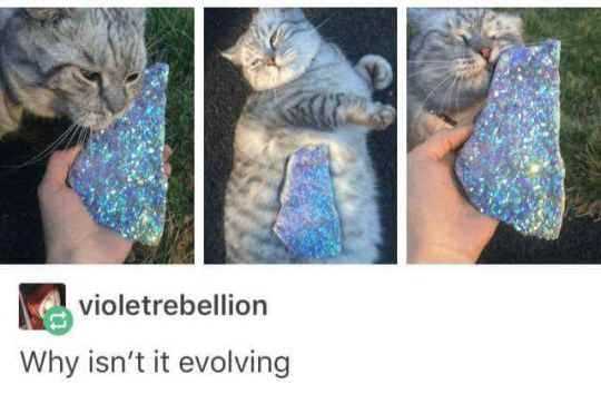 When you try to use a Moon Stone IRL. | Literally Just 24 Really Funny Tumblr Posts About Pokémon