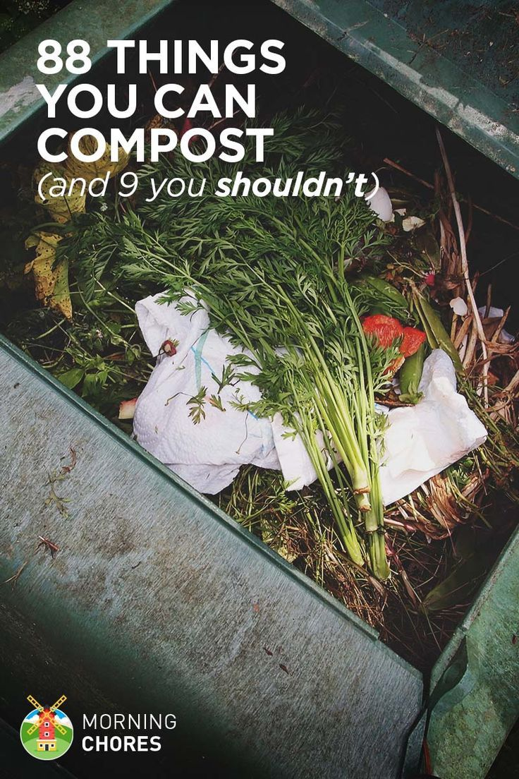 88 Things to Compost
