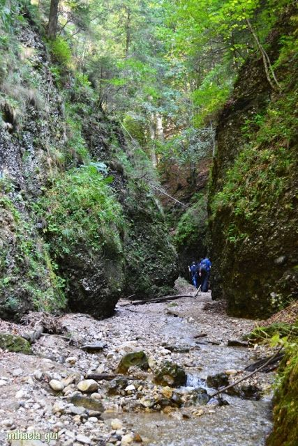 Zona de drumeție (Hiking Zone): Ciucășeala de toamnă (drumeție din septembrie 2015) Hiking Romania - Ciucas Poiana Stanii