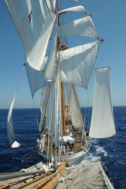 Buque Escuela Esmeralda marca récord con más de 10 mil visitas en un sólo día en Mar del Plata by Armada de Chile, via Flickr