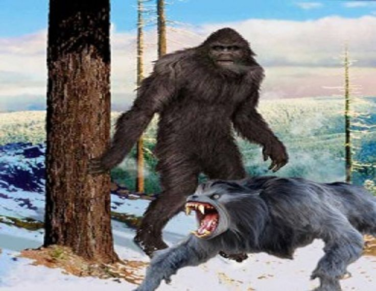 A Paranormal, Sci-fi, Weird, Strange, Fortean Blog. We discuss everything from bionics to bigfoot.