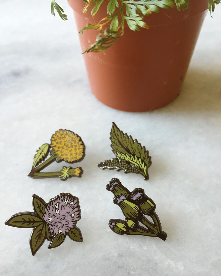 We just sneak released 4 new lapel pins inspired by pretty common weeds: Dandelion, Clover, Fleabane and Nettle. All small and dainty hard enamel guys. Available online now and we'll have some at @renegadecraft Brooklyn this weekend too  P.S. We also just restocked all our totes!