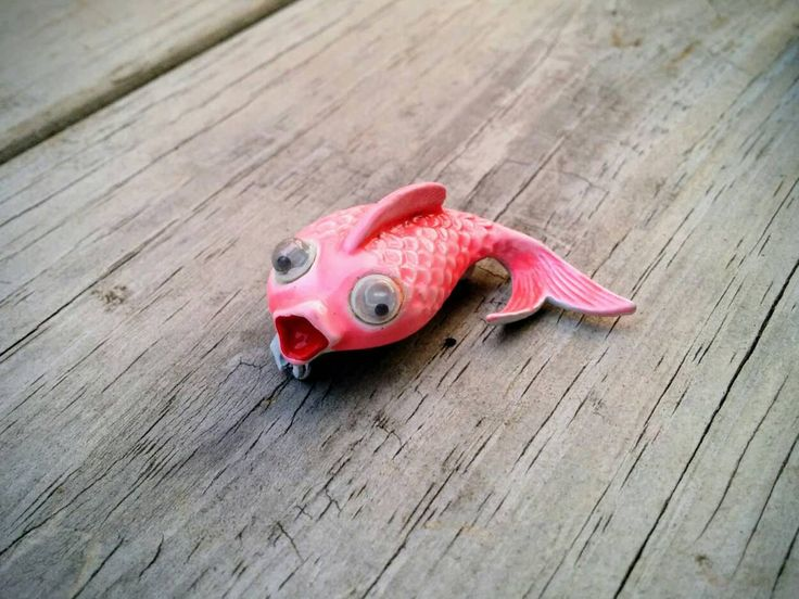 25 Best Ideas About Pink Fish On Pinterest Pretty Fish