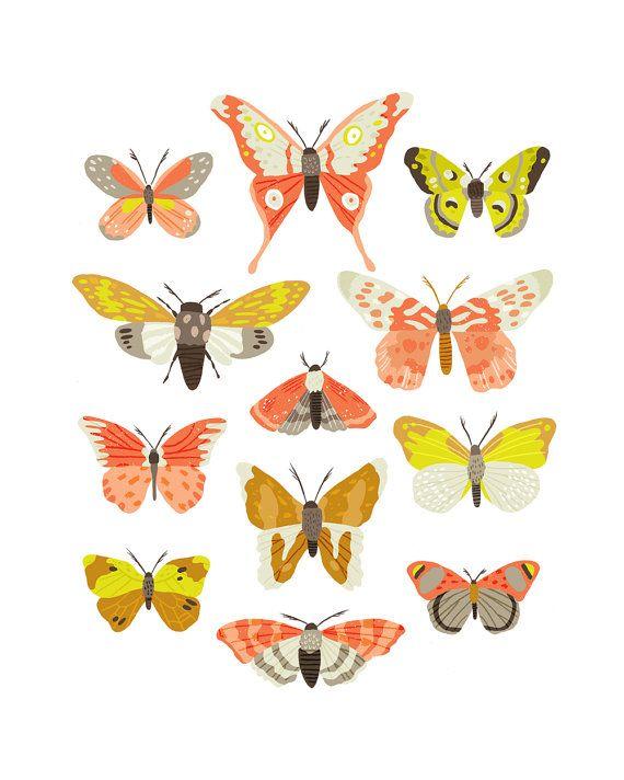Art Print  Moth Identification Chart by smalltalkstudio on Etsy, $20.00