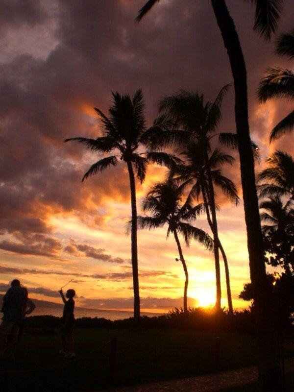 10 Must Do Things in Maui, Hawaii!