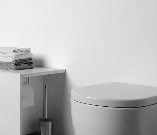 Ocultar el papel Higienico. Vireco