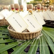 mini tequila bottles: name cards with table assignments and favors!: Wedding Favors, Escort Cards, Parties Favors, Ae Plans, Names Cards, Places Cards, Mexico Wedding, Tequila Bottle, Hot Sauces