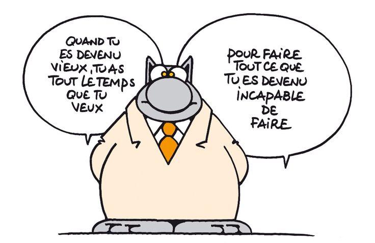 ....? Le Chat de Geluck
