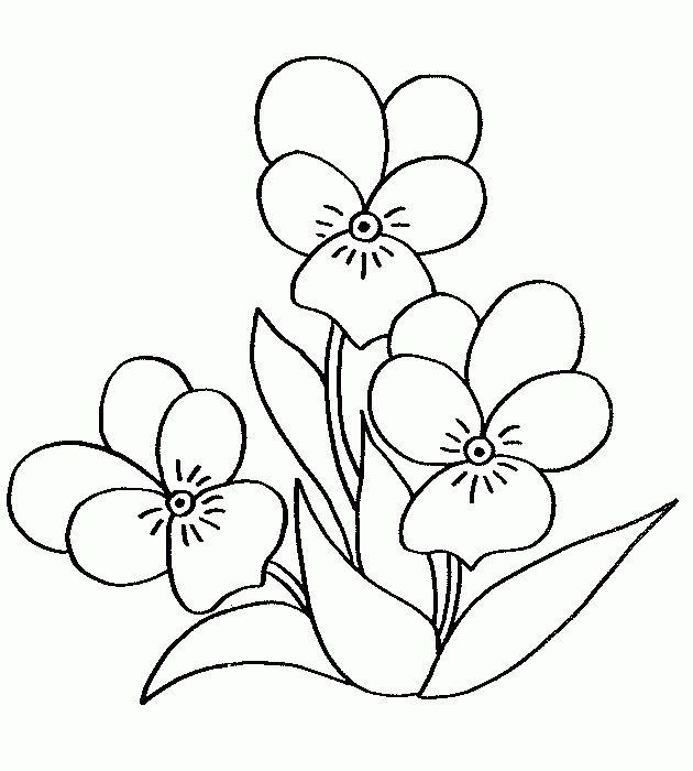 flores para colorear | Flores con jarrón Flores Mariposa en flores Flores exóticas Pétalos ...