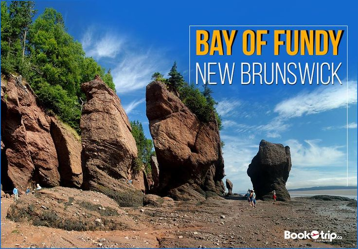 The #BayofFundy, has the world's highest tides. It's the extended, delta-like shape of the bay that intensifies the tides. Call to book a ticket if you are a nature lover : (888) 379-1003 BookOtrip.ca #travelforless