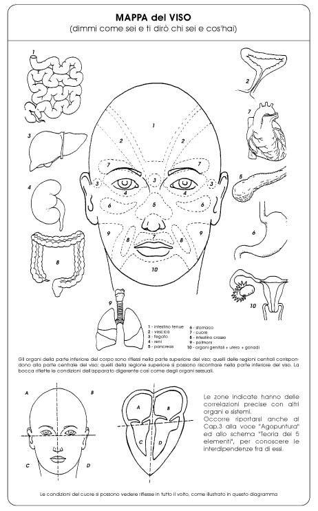 Mappa del viso per scoprire il nostro stato di salute