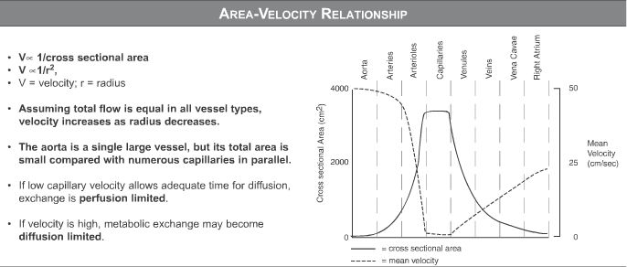 USMLE Step 1 Qbank - area velocity relationship