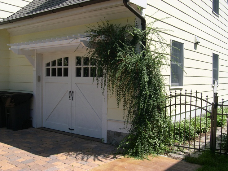 Jasmine Vine On Eyebrow Pergola Above A Garage Door Our