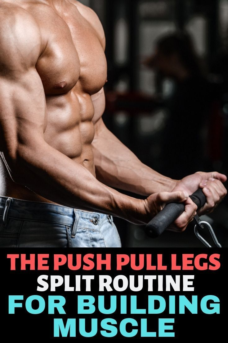 The Definitive Guide To Push Pull Legs Split Routine