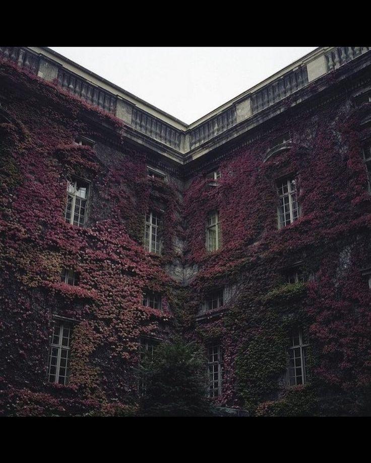 #amazing #world #russia #paris #berlin #italia #monaco #saratov #chic #lady #architecture #chicago #ny #spb #moscow #switzerland #murmansk #dubai #grace #sochi #losangeles #california #roses