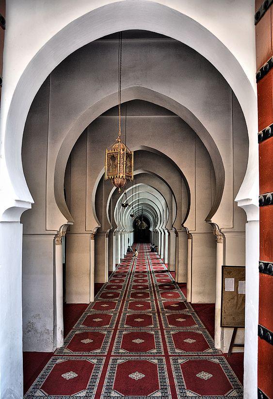 #Marrakech #Morocco #Travel