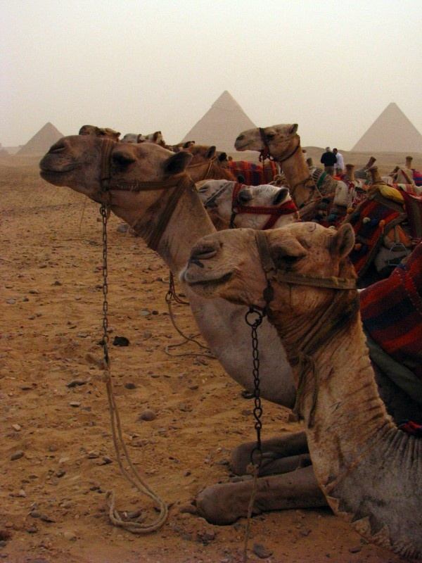 not top of travel wish list but amazing photo...blue sky travel   cairo, egypt