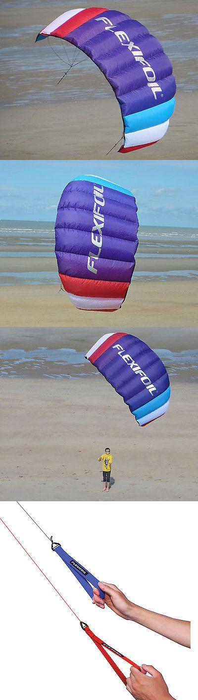 Kites 2569: Brand New Flexifoil 1.6M2 Two Line Big Buzz Power Kite -> BUY IT NOW ONLY: $99 on eBay!