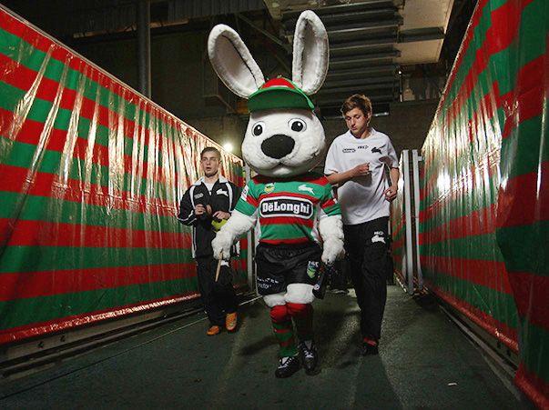 Reggie Rabbit - South Sydney Rabbitohs
