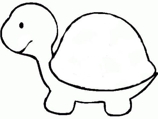 korytnačka návod