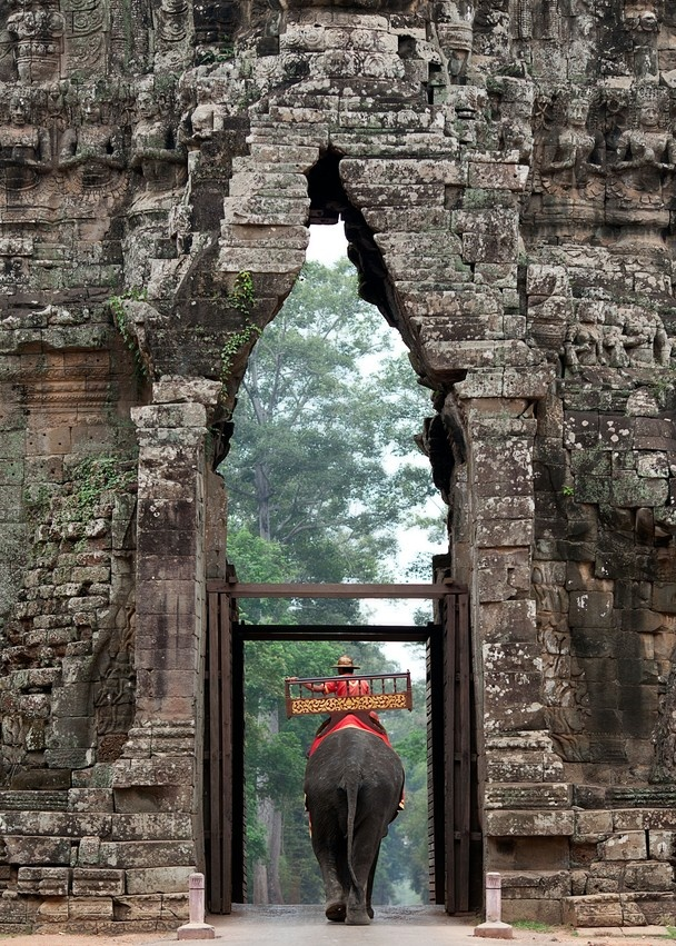 Angkor Wat - Cambodia - WOW I took a nearly identical photo with elephant at same spot when we visited!