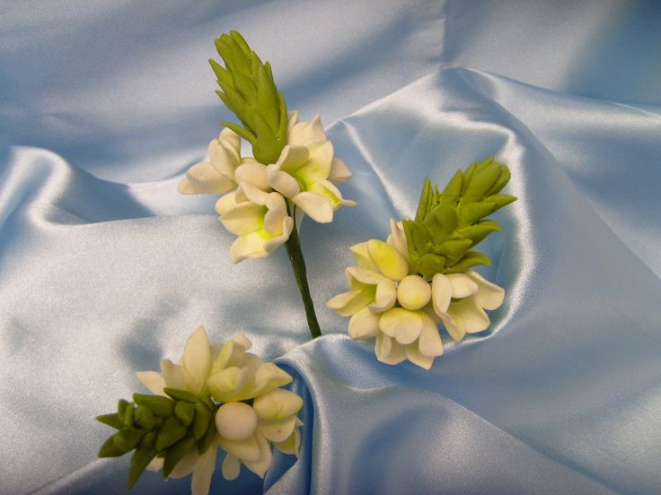 Sugar Gumpaste Floral Star of Bethlehem Chincherinchee 3 Stems White and Apple Green $27.00