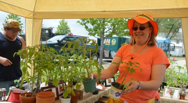 Kasie Rogowski from Timberlane Gardens shows healthy tomato plants during the Village of Homer Glen Earth Day-Arbor Day celebration held Saturday, May 16 at Konow Farm. Photos by Felicitas Cortez/22nd Century Media